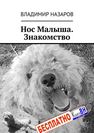 Владимир Назаров, Нос Малыша. Знакомство