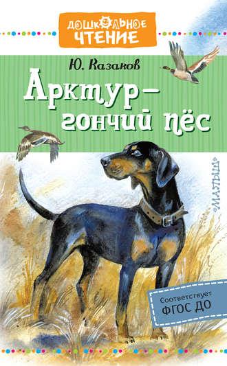 Юрий Казаков, Арктур – гончий пёс