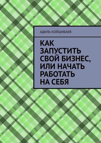 Адиль Койшибаев, Как запустить свой бизнес, или Начать работать насебя