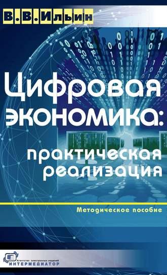 Владислав Ильин, Цифровая экономика: практическая реализация