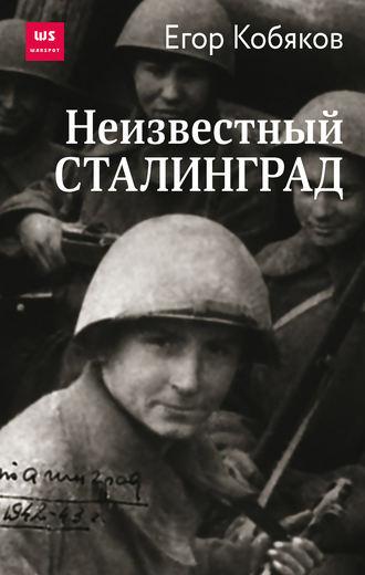 Егор Кобяков, Неизвестный Сталинград