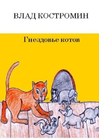 Влад Костромин, Гнездовье котов