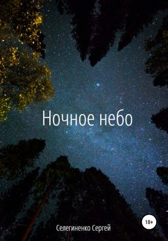 Сергей Селегиненко, Ночное небо