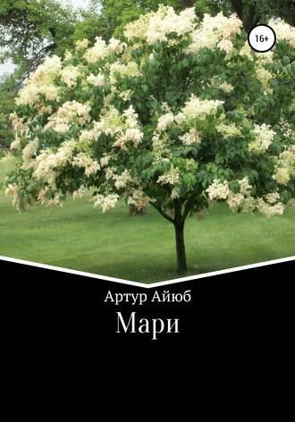 Артур Айюб, Мари