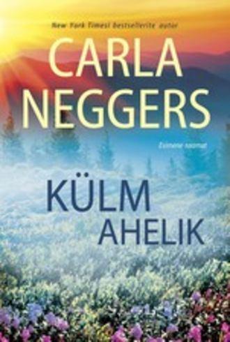 Carla Neggers, Külm ahelik. Esimene raamat