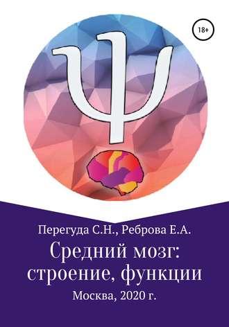 Сергей Перегуда, Елена Реброва, Средний мозг: строение и функции