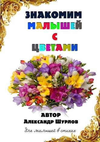 Александр Шурлов, Знакомим малышей сцветами