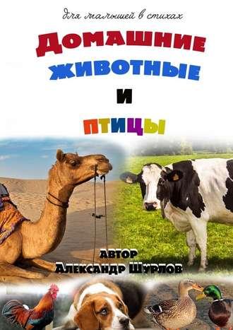 Александр Шурлов, Домашние животные иптицы