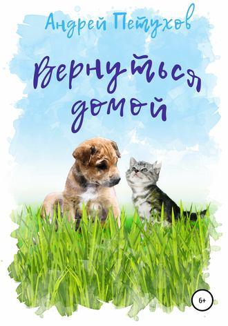 Андрей Петухов, Вернуться домой
