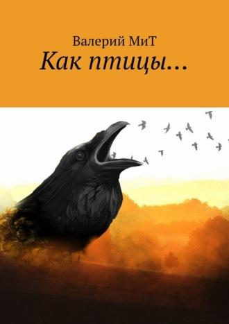 Валерий МиТ, Как птицы…