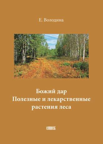 Е. Володина, Божий дар. Полезные и лекарственные растения леса