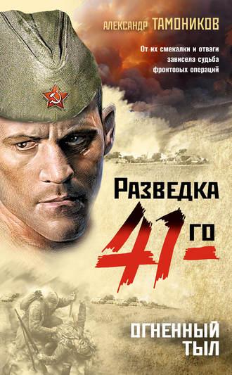 Александр Тамоников, Огненный тыл