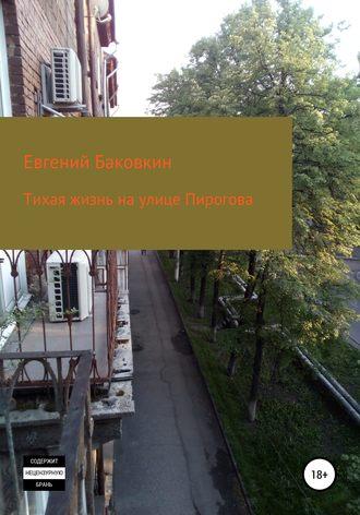 Евгений Баковкин, Тихая жизнь на улице Пирогова