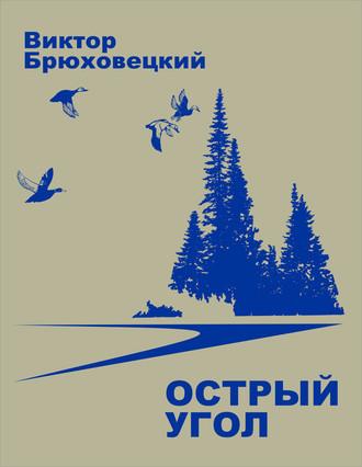 Виктор Брюховецкий, Острый угол