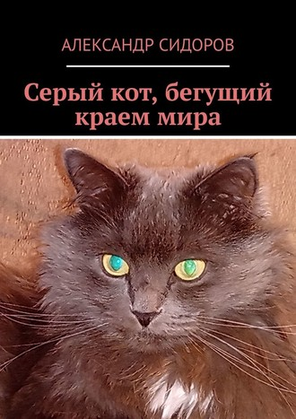 Александр Сидоров, Серый кот, бегущий краеммира