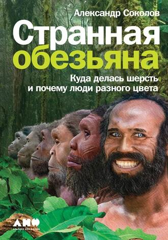 Александр Соколов, Странная обезьяна