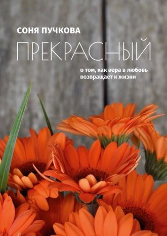 Соня Пучкова, Прекрасный. О том, как вера в любовь возвращает к жизни
