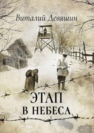 Виталий Девяшин, Этап внебеса