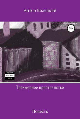 Антон Билецкий, Трёхмерное пространство