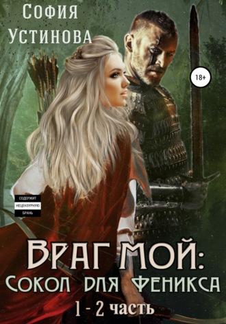 Александра Ермакова, Враг мой: Сокол для Феникса