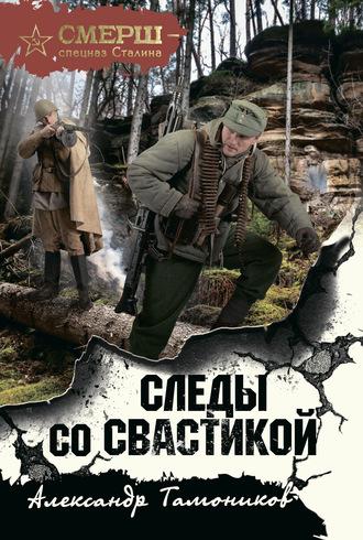 Александр Тамоников, Следы со свастикой