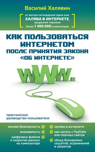 Василий Халявин, Как пользоваться Интернетом после принятия закона «Об Интернете»