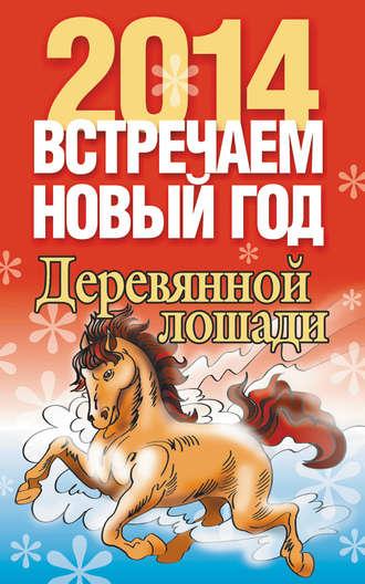 Лариса Конева, Встречаем Новый год 2014