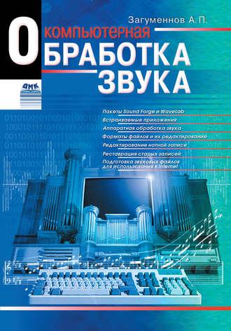 Александр Загуменнов, Компьютерная обработка звука