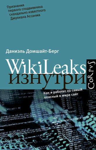 Даниэль Домшайт-Берг, WikiLeaks изнутри