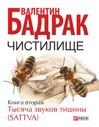 Валентин Бадрак, Чистилище. Книга 2. Тысяча звуков тишины (Sattva)